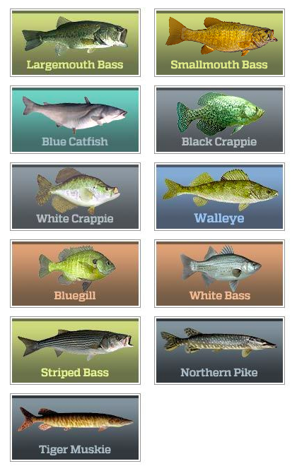 Fish Species in Lake James.png